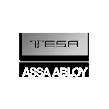 02_tesa